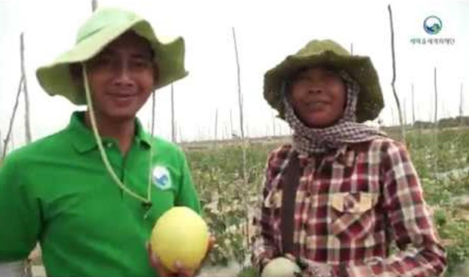 캄보디아 고소득작물재배 로까마을 작목반
